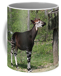 Okapi Coffee Mug by Judy Whitton