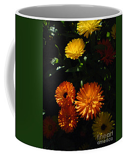 Coffee Mug featuring the photograph Old-fashioned Marigolds by Martin Howard