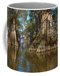 Old-growth Cypresses At Lake Fausse Coffee Mug
