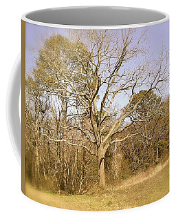 Old Haunted Tree Coffee Mug by Amazing Photographs AKA Christian Wilson