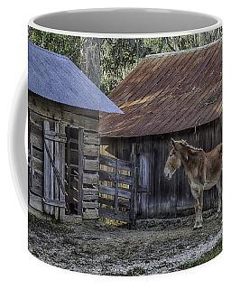 Old Red Mule Coffee Mug by Lynn Palmer
