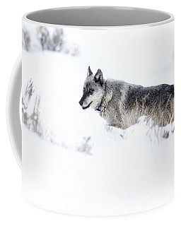 Ole Blue Eyes Coffee Mug