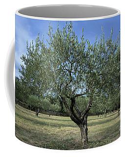 Olive Tree Coffee Mug