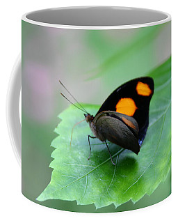 On The Leaf Coffee Mug