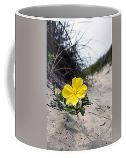 Coffee Mug featuring the photograph On The Path by Sennie Pierson