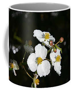 Coffee Mug featuring the photograph On The Shore Line by Denyse Duhaime