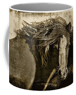 On The Winds Of Time Coffee Mug