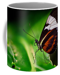 On The Wings Of Beauty Coffee Mug