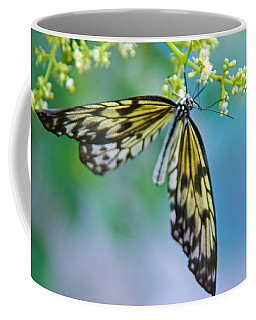 Coffee Mug featuring the photograph On Wings Of Grace by Tam Ryan