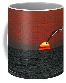 One Black Skimmers At Sunset Coffee Mug by Tom Janca