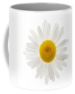 Common Daisy Coffee Mugs