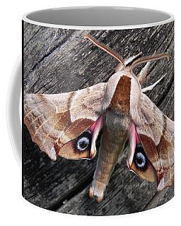 One-eyed Sphinx Coffee Mug by Cheryl Hoyle