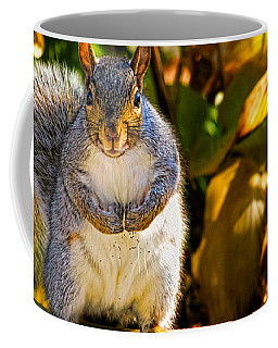 Coffee Mug featuring the photograph One Gray Squirrel by Bob Orsillo