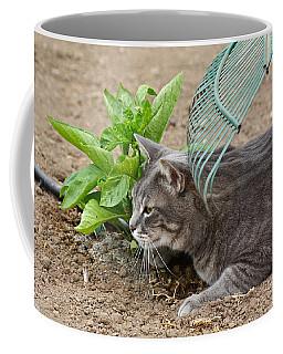 One Happy Cat Coffee Mug