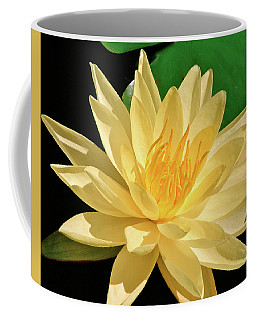 One Water Lily  Coffee Mug by Ed  Riche