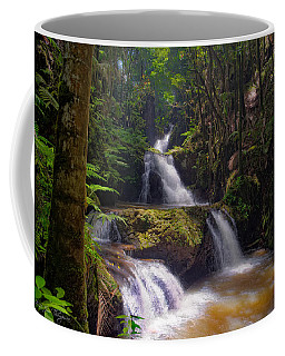 Coffee Mug featuring the photograph Onomea Falls by Jim Thompson
