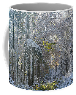 Coffee Mug featuring the photograph Onset Of Winter 1 by Rudi Prott