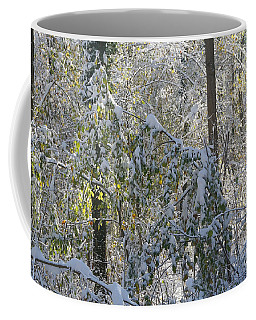 Coffee Mug featuring the photograph Onset Of Winter 2 by Rudi Prott
