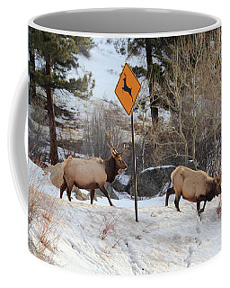 Oops Wrong Crossing Coffee Mug