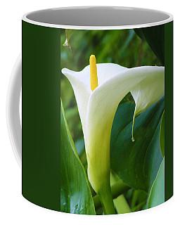 Open Your Heart Coffee Mug by Tiffany Erdman