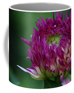 Coffee Mug featuring the photograph Opening Day by Denyse Duhaime