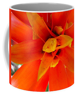 Orange Bromeliad Coffee Mug