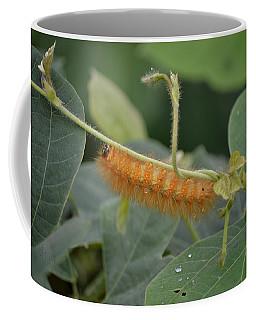 Orange Caterpillar On The Move Coffee Mug