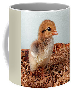 Orange Chick Coffee Mug