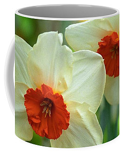 Orange Cupped Daffodils Coffee Mug