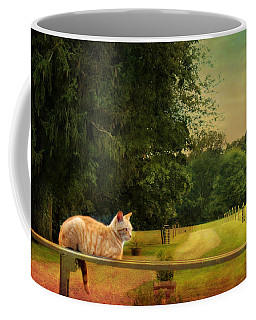 Orange Farm Cat Coffee Mug
