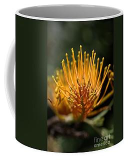 Orange Grevillea Coffee Mug