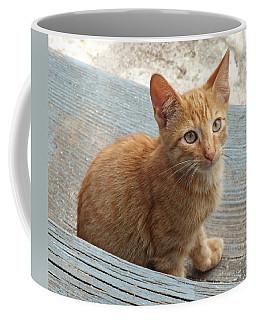 Orange Kitten 2 At The Front Porch Coffee Mug