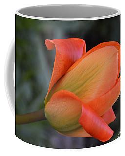 Orange Lady Coffee Mug by Felicia Tica