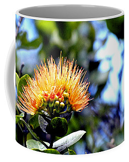 Orange Lehua On Volcano Ranch Coffee Mug