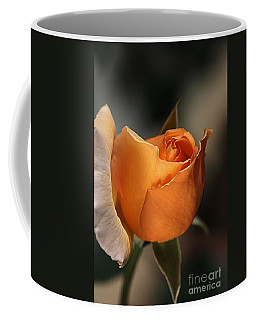 Coffee Mug featuring the photograph Orange Mood by Joy Watson