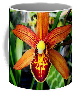 Coffee Mug featuring the photograph Orange Orchid by Kristine Merc