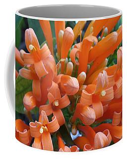Orange Petals Coffee Mug