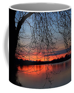 Coffee Mug featuring the photograph Orange Sunset by Lynn Hopwood