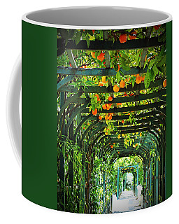 Coffee Mug featuring the photograph Oranges And Lemons On A Green Trellis by Brooke T Ryan