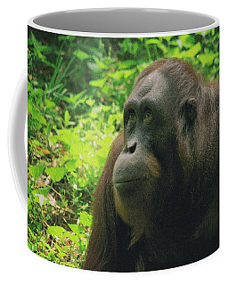 Coffee Mug featuring the photograph Orangutan by Dennis Baswell