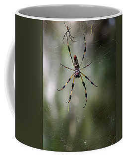Coffee Mug featuring the photograph Orb Weaver 006 by Chris Mercer