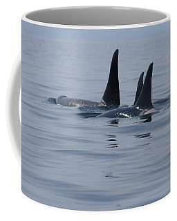 Orca Family Coffee Mug by Marilyn Wilson