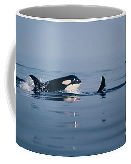 Coffee Mug featuring the photograph Orcas Off The San Juan Islands Washington  1986 by California Views Mr Pat Hathaway Archives