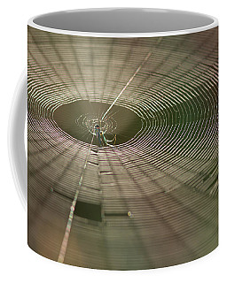 Coffee Mug featuring the photograph Orchard Orbweaver #1 by Paul Rebmann