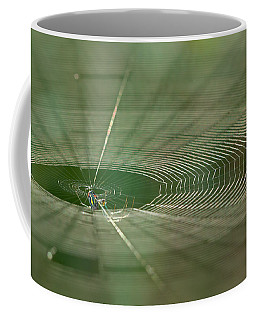 Coffee Mug featuring the photograph Orchard Orbweaver #2 by Paul Rebmann