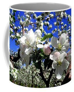 Orchard Ovation Coffee Mug