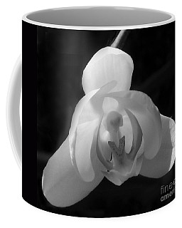 Orchid #2 Coffee Mug
