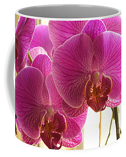 Coffee Mug featuring the photograph Orchid by Lingfai Leung