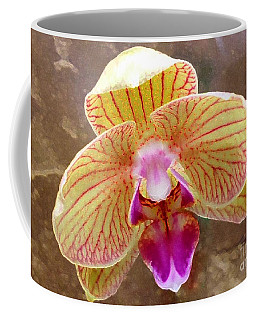 Orchid On Marble Coffee Mug by Barbie Corbett-Newmin