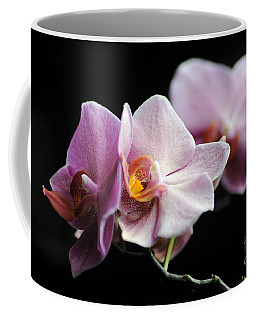 Coffee Mug featuring the photograph Orchid by Randi Grace Nilsberg